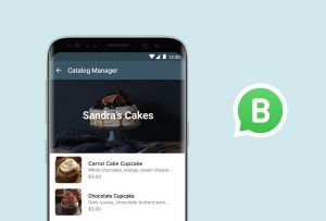 Catalog-Manager-WhatsApp-Business