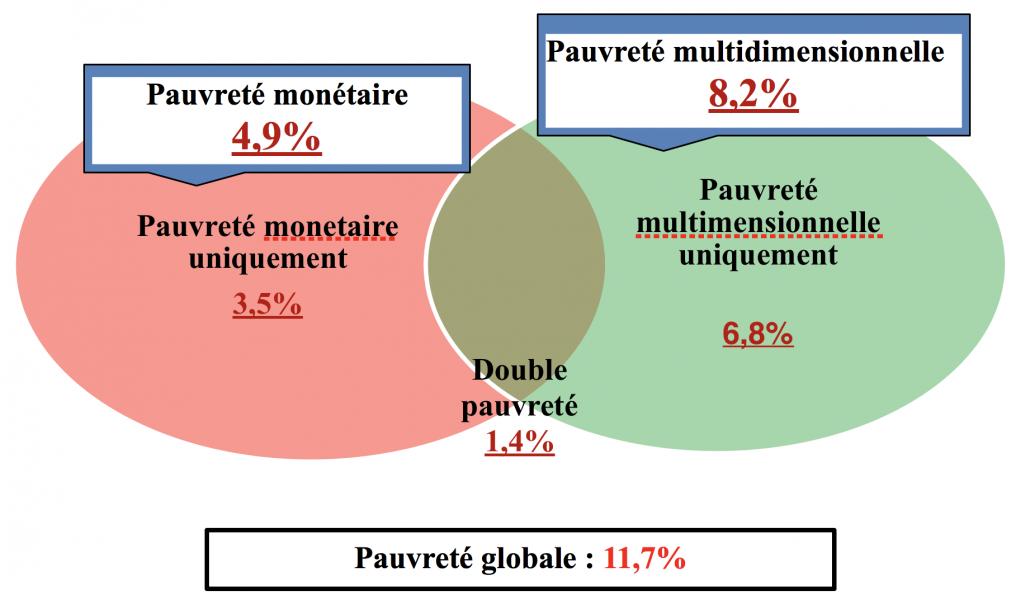Distribution des formes de pauvreté et de leur cumul