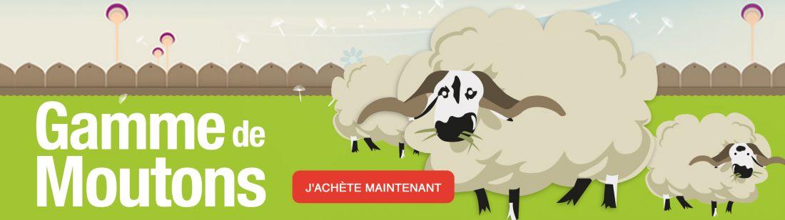 Gamme de moutons