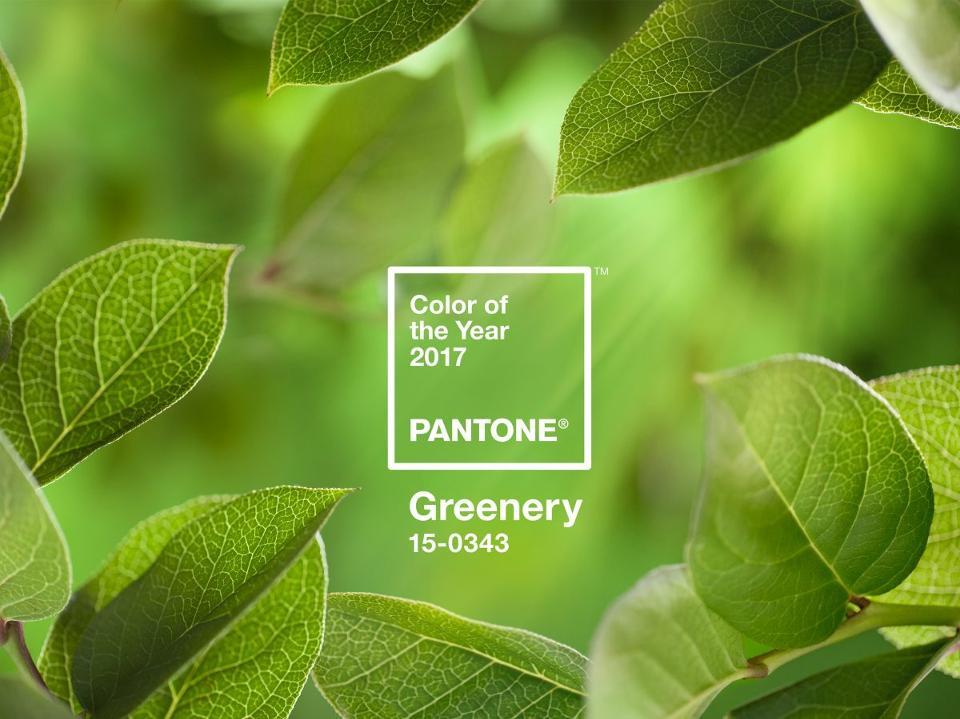 Greenery, couleur Pantone de l'année