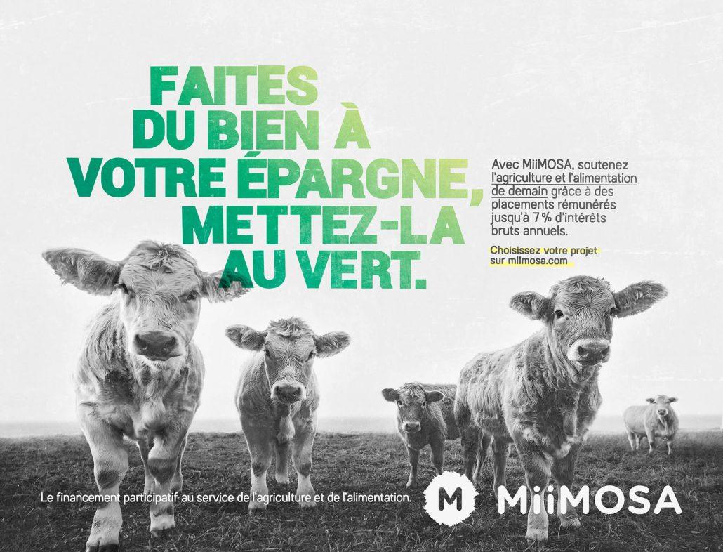Visuel générique vaches campagne Miimosa