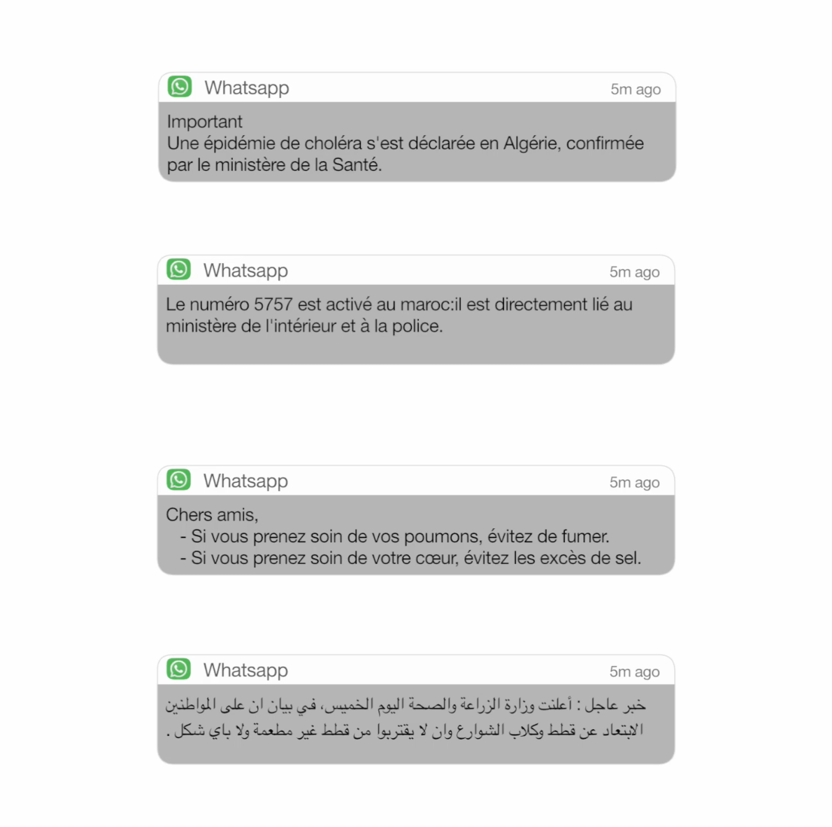 Whatsapp Messaging Alerts