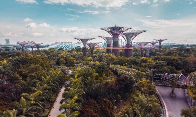 Durabilité des villes et économie circulaire