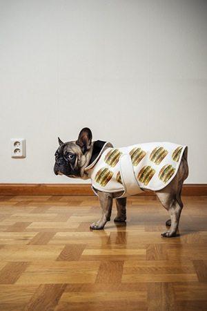 Big Mac Dog