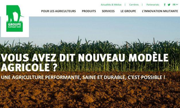 Le Groupe ÉLÉPHANT VERT lance son nouveau site web
