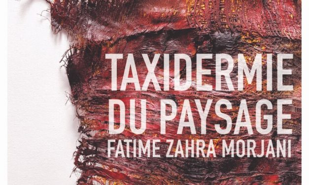 Taxidermie du paysage, par Fatime Zahra Morjani